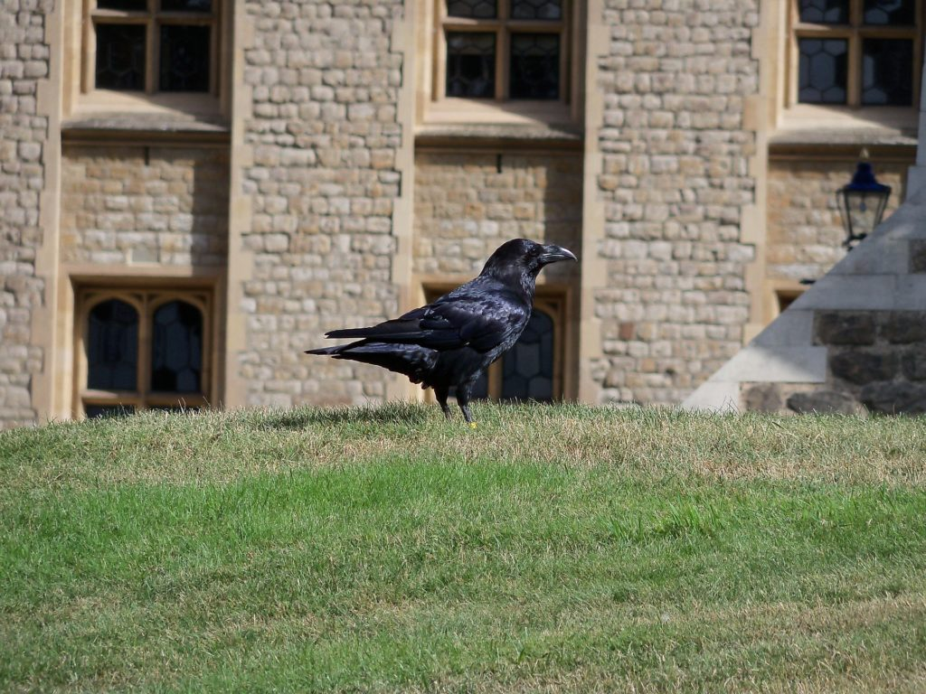 10 things you did not know about the Tower of London